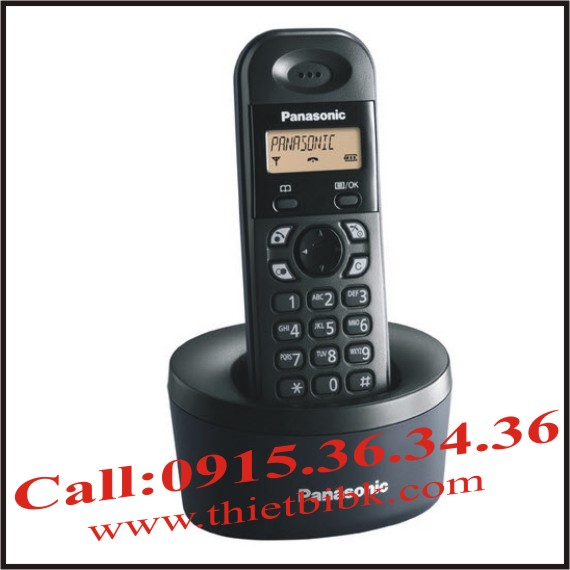 Panasonic KX-TG1311 sua